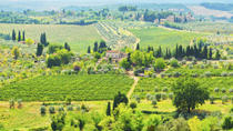 Chianti Semi-Private Cooking Class at a Tuscan Villa, Florence, Day Trips