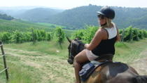 Horse Riding in Chianti Day Trip from Florence , Florence, Horseback Riding