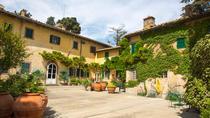 Small-Group Tuscany Grand Tour: Siena, San Gimignano, Chianti, Pisa, and Lucca