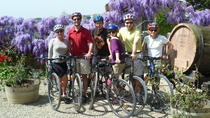 Tuscany Bike Tour from Florence, Florence, Wine Tasting & Winery Tours