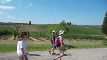 Tuscany Hiking Tour from Florence Including Wine Tasting and Lunch, Florence, Hiking & Camping