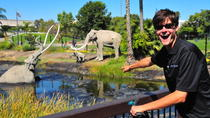La Brea Tar Pits Tour by Segway, Los Angeles, Self-guided Tours & Rentals