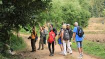 Inle: Full Day Trekking and Boat Adventure Tour Including Lunch, Yangon, 4WD, ATV & Off-Road Tours