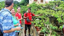 Small-Group Hanoi Countryside Half-Day Bike Tour