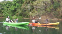 River kayak wildlife and mangrove observation, Sámara, Kayaking & Canoeing