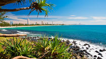 Beach and Nature Walk - Half Day Tour, Gold Coast, Day Trips