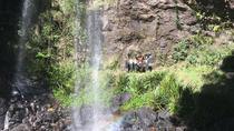 Springbrook National Park Hiking Adventure, Gold Coast, 4WD, ATV & Off-Road Tours