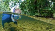 Mossman River Drift Snorkelling from Port Douglas or Mossman, Port Douglas, Snorkeling