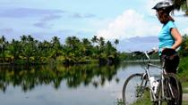 Kochi Bike Tour and Backwaters Cruise, Kochi, Private Sightseeing Tours