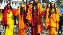 Pashupatinath Temple and Bodhnath Stupa Tour from Kathmandu, Kathmandu, City Tours