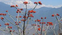 Pohkara Small Group Hiking Tour, Pokhara, Hiking & Camping