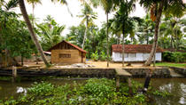 Small-Group Kerala Backwaters Tour from Kochi Including Ayurvedic Massage , Kochi, Walking Tours