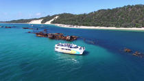 Moreton Bay Marine Park Dolphin Cruise Including Lunch, Brisbane, Dolphin & Whale Watching