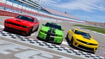 American muscle car challenge at the las vegas motor for Las vegas motor speedway transportation