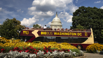 Recorrido en un gran autobús con paradas libres por Washington DC, Washington DC, Hop-on Hop-off Tours