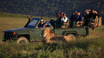 2 Day Safari Experience, Cape Town, 4WD, ATV & Off-Road Tours