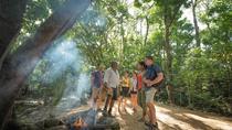 Aboriginal Cultural Daintree Rainforest Tour from Cairns or Port Douglas, Cairns & the Tropical...