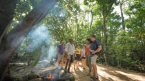 Aboriginal Cultural Tagestour zum Daintree-Nationalpark ab Cairns oder Port Douglas, Cairns & ...