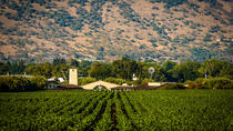 VIP NAPA & SONOMA WINE COUNTRY EXPERIENCE, San Francisco, Private Sightseeing Tours