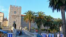 Korcula & Ston - Wine and Oysters Tasting Private Day Tour, Dubrovnik, Private Sightseeing Tours