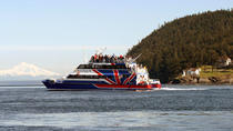 Friday Harbor Day Trip & Whale Watching from Seattle, Seattle, Ferry Services