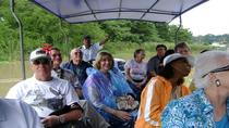 Tortuguero Canal Boat Tour: From Puerto Limon, Limon, Ports of Call Tours