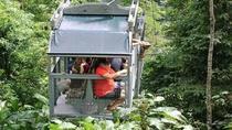 Veragua Rainforest, Limon, Ports of Call Tours