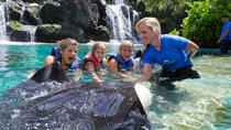 Hawaiian Reef and Ray Encounter at Sea Life Park Hawaii, Oahu, Theme Park Tickets & Tours