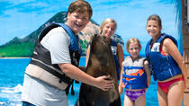 Sea Life Park Hawaii Eintrittskarten, Oahu, Theme Park Tickets & Tours