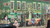 Private Street & Public Art Tour of Chicago's Pilsen Neighborhood, Chicago, Literary, Art & Music...