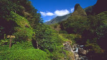 Lahaina Shore Excursion: Tropical Plantation Tour and Iao Valley, Maui