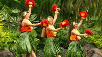 Oahu Shore Excursion: North Shore and Polynesian Cultural Center, Oahu