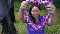 Traditional Airport Lei Greeting in Honolulu Oahu, Oahu, Family Friendly Tours & Activities