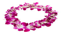 Traditional Lei Greeting in Kona, Big Island of Hawaii, Airport Services