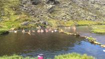 Landmannalaugar and Hekla Volcano Day Trip by Super Jeep from Reykjavik, Reykjavik, null