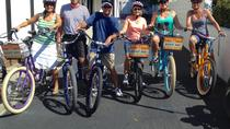 Small-Group Carlsbad E-Bike Tour Including Meditation Gardens, Carlsbad, Bike & Mountain Bike Tours