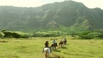 Full-Day Kualoa Ranch Adventure