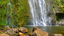East Maui Waterfalls and Rainforest Hike, Maui, Hiking & Camping