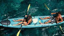 Snorkel-, kajak- og delfinoplevelse i Big Islands Kealakekua Bay, Big Island of Hawaii, Kayaking & ...