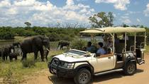 Chobe day trip ex Livingstone, Victoria Falls, Day Trips