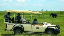 Chobe day trip ex Victoria Falls, Victoria Falls, Day Trips