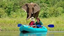 Upper Zambezi Canoe Safari, Victoria Falls, Safaris