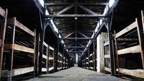 Auschwitz-Birkenau and Wieliczka Salt Mine Day Tour from Krakow, Krakow, Day Trips