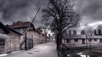 Auschwitz-Birkenau Historical Tour From Krakow with Transport, Krakow, Historical & Heritage Tours