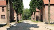 Full-Day Auschwitz-Birkenau and Oskar Schindler Factory Tour from Krakow, Krakow, Historical &...