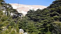 Cedars Forest Hiking (intera giornata), Beirut