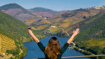 Traditional Douro Valley and Wine Small Group Tour, Porto, Wine Tasting & Winery Tours