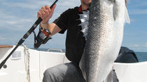 Fresh-Water Bass Fishing Trip on Kauai, Kauai, Fishing Charters & Tours