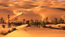 Full day Liwa Desert Safari, Dubai, Cultural Tours