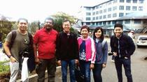 Tea Tours in Nuwara-Eliya with MTH